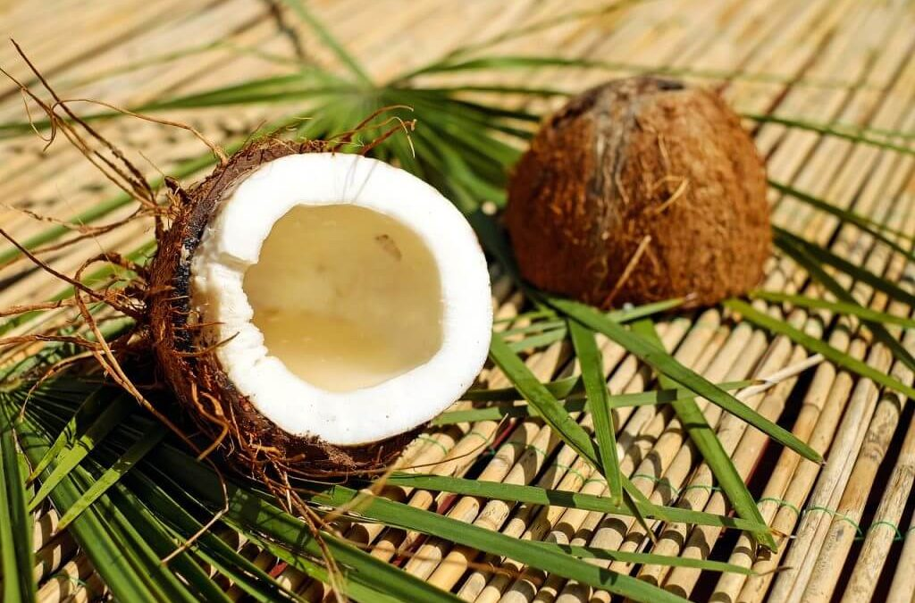 Benefits of consuming coconut